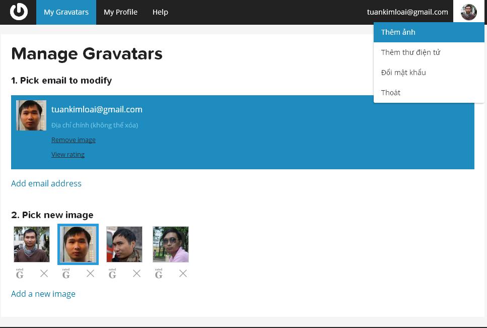 avatar-wordpress-5